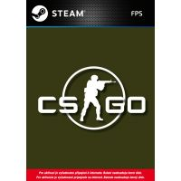 Counter-Strike: Global Offensive (Steam) (PC)