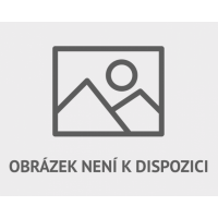 Kniha Warhammer: Age of Sigmar - Battletome: Sylvaneth