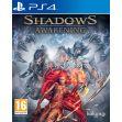 Shadows: Awakening (PS4)