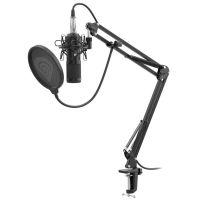 Streamovací mikrofon Genesis Radium 300 (PC)
