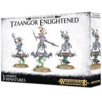 Warhammer: Age of Sigmar - Tzeentch Arcanites: Tzaangor Enlightened